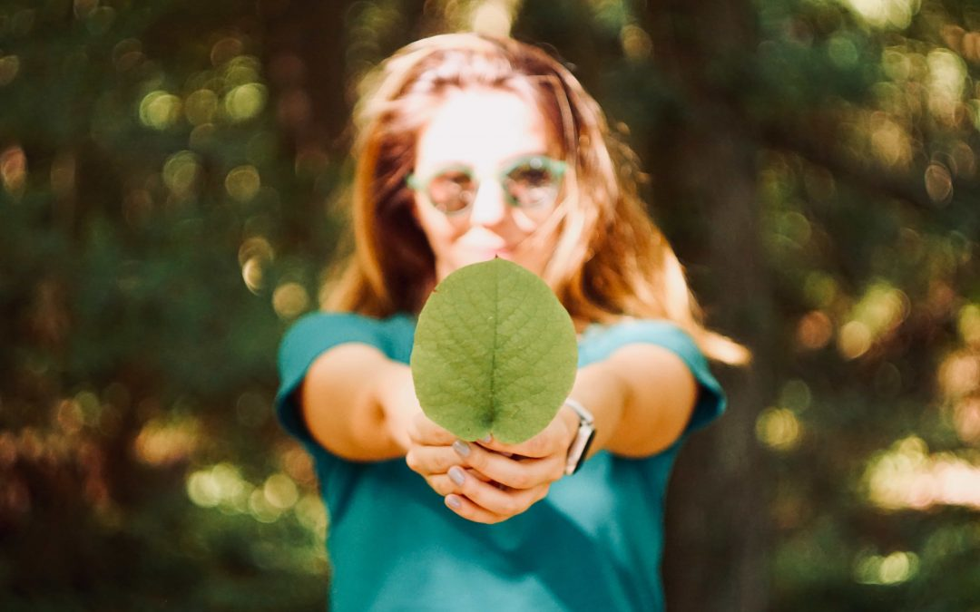 What is an Ecopreneur?